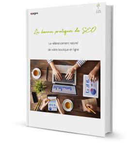 Livre Blanc Les bonnes pratiques SEO